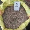 热销:红枫种子、香樟种子、国槐种子、栾树种子、银杏种子