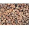 供应沙藏毛桃核,杏核,杜梨种子